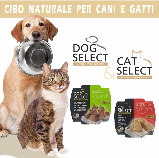 Dog and Cat selection prodotti per animali cover