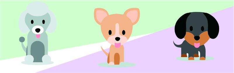dog-banner